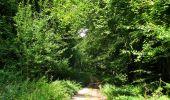 Randonnée Marche HARAMONT - en forêt de Retz_79_08_2019_vers Taillefontaine et Retheuil par les lisières - Photo 71