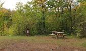 Trail Walk Viroinval - De Nismes à Petigny par le Tienne du Lion - Photo 10