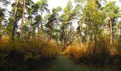Randonnée Marche SAINT-JEAN-AUX-BOIS - en forêt de Compiègne_32_11_2019_les Tournantes de la Muette et sous la Tête Saint-Jean - Photo 107
