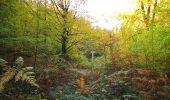 Randonnée Marche SAINT-JEAN-AUX-BOIS - en forêt de Compiègne_32_11_2019_les Tournantes de la Muette et sous la Tête Saint-Jean - Photo 169