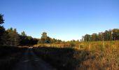 Trail Walk DAMPLEUX - en forêt de Retz_80_sur la Route Tortue et la Route Droite - Photo 53