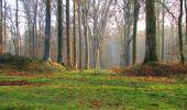 Randonnée A pied VILLERS-COTTERETS - le GR11A  dans la Forêt de Retz  - Photo 31