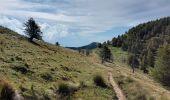 Randonnée Marche MOULINET - Camp d'Argent  - Photo 8