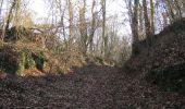 Trail On foot VIEUX-MOULIN - en forêt de Compiègne_23_la Grotte des Ramoneurs_le Mont Berny - Photo 55