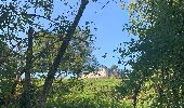 Randonnée Marche Saint-Hubert - Mirwart redu  - Photo 21
