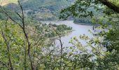 Randonnée Marche SAINT-HIPPOLYTE - Chateau et puech de Poujol - Photo 2