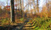 Trail Walk SAINT-JEAN-AUX-BOIS - en forêt de Compiègne_33_12_2019_les Tournantes de l'étang Saint-Jean et des Prés Saint-Jean - Photo 176