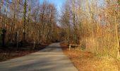 Trail On foot VIEUX-MOULIN - en forêt de Compiègne_23_la Grotte des Ramoneurs_le Mont Berny - Photo 78