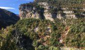 Trail Walk CHATEAUNEUF-DE-CHABRE - Gorges de la Méouge retour par côte chaude - Photo 6