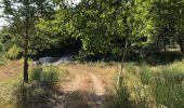 Randonnée Marche BARGEMON - Le bois de ciste - Photo 5