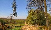 Randonnée Marche LONGPONT - en forêt de Retz_77_Longpont_Puiseux en Retz_AR - Photo 59
