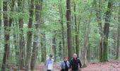 Randonnée Marche Havelange - Failon - Somal - Photo 2