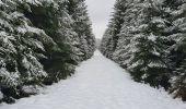 Trail Walk Sainte-Ode - rando lavacherie 29/12/2020 - Photo 22
