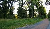 Trail Walk DAMPLEUX - en forêt de Retz_80_sur la Route Tortue et la Route Droite - Photo 5