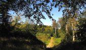 Trail Walk DAMPLEUX - en forêt de Retz_80_sur la Route Tortue et la Route Droite - Photo 7