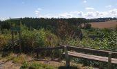 Trail Walk Havelange - De Havelange à Saint Fontaine par le village de Ossogne - Photo 3
