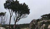 Randonnée Marche BIZE-MINERVOIS - Montredon / Combebelle-le-haut - Photo 4