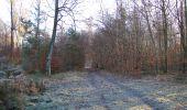 Trail Walk SAINT-JEAN-AUX-BOIS - en forêt de Compiègne_33_12_2019_les Tournantes de l'étang Saint-Jean et des Prés Saint-Jean - Photo 129