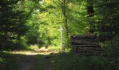 Randonnée Marche LACROIX-SAINT-OUEN - en forêt de Compiègne_35_la Croix Saint-Sauveur_le Ru du Goderu - Photo 57