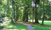 Randonnée A pied VILLERS-COTTERETS - le GR11A  dans la Forêt de Retz  - Photo 15