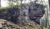 Randonnée Marche MUHLBACH-SUR-BRUCHE - Le Jardin des Fées par la cascade de Soulzbach - Photo 21