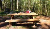 Randonnée A pied VILLERS-COTTERETS - le GR11A  dans la Forêt de Retz  - Photo 77