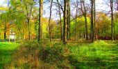 Randonnée A pied VILLERS-COTTERETS - le GR11A  dans la Forêt de Retz  - Photo 52