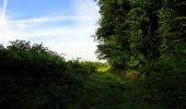 Randonnée Marche COYOLLES - en forêt de Retz_78_les rayons du Rond Capitaine - Photo 84