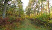 Randonnée Marche SAINT-JEAN-AUX-BOIS - en forêt de Compiègne_32_11_2019_les Tournantes de la Muette et sous la Tête Saint-Jean - Photo 98