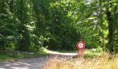 Randonnée Marche SAINT-JEAN-AUX-BOIS - en forêt de Compiègne_2_ruines gallo-romaines de Champlieu_les Petits Monts - Photo 52