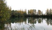 Trail Walk NOGENT-SUR-SEINE - Boucle Nogent Liours  - Photo 4