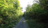 Trail Walk DAMPLEUX - en forêt de Retz_80_sur la Route Tortue et la Route Droite - Photo 125
