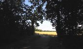 Randonnée Marche LACROIX-SAINT-OUEN - en forêt de Compiègne_35_la Croix Saint-Sauveur_le Ru du Goderu - Photo 41