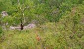 Trail Walk PRADINES - Cahors les Durands 7km - Photo 1