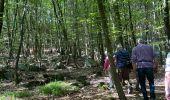 Randonnée Marche Jalhay - Sart - Photo 1