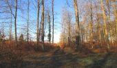 Trail Walk SAINT-JEAN-AUX-BOIS - en forêt de Compiègne_33_12_2019_les Tournantes de l'étang Saint-Jean et des Prés Saint-Jean - Photo 14