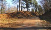 Trail Walk RETHEUIL - en forêt de Retz_76_dans les forêts de Retz et de Compiègne - Photo 143