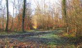 Trail Walk SAINT-JEAN-AUX-BOIS - en forêt de Compiègne_33_12_2019_les Tournantes de l'étang Saint-Jean et des Prés Saint-Jean - Photo 17