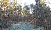 Randonnée Marche SAINT-JEAN-AUX-BOIS - en forêt de Compiègne_19_le Puits d'Antin_les Mares St-Louis_La Muette - Photo 16