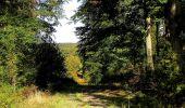 Trail Walk DAMPLEUX - en forêt de Retz_80_sur la Route Tortue et la Route Droite - Photo 9