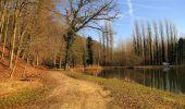 Trail On foot VIEUX-MOULIN - en forêt de Compiègne_23_la Grotte des Ramoneurs_le Mont Berny - Photo 35