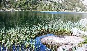 Trail Walk ARAGNOUET - les lacs - Photo 10
