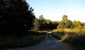 Trail Walk DAMPLEUX - en forêt de Retz_80_sur la Route Tortue et la Route Droite - Photo 50