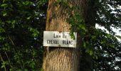 Trail Walk COYOLLES - en forêt de Retz_78_les rayons du Rond Capitaine - Photo 68
