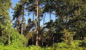 Trail Walk DAMPLEUX - en forêt de Retz_80_sur la Route Tortue et la Route Droite - Photo 90