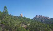 Trail Walk CONCA - GR20 Etape 15 Paliri Conca - Photo 2