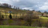 Randonnée Marche LE MENIL - Grande boucle au départ des chalets de la Feigne sur de l'Eau - Photo 3