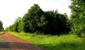 Randonnée Marche COYOLLES - en forêt de Retz_78_les rayons du Rond Capitaine - Photo 130