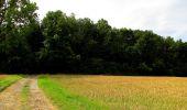 Randonnée Marche HARAMONT - en forêt de Retz_79_08_2019_vers Taillefontaine et Retheuil par les lisières - Photo 90