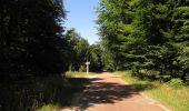 Randonnée Marche SAINT-JEAN-AUX-BOIS - en forêt de Compiègne_2_ruines gallo-romaines de Champlieu_les Petits Monts - Photo 55